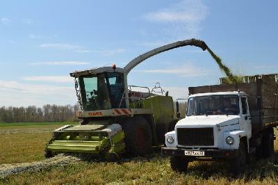 Аграрии Ишимского района завершили уборочную кампанию